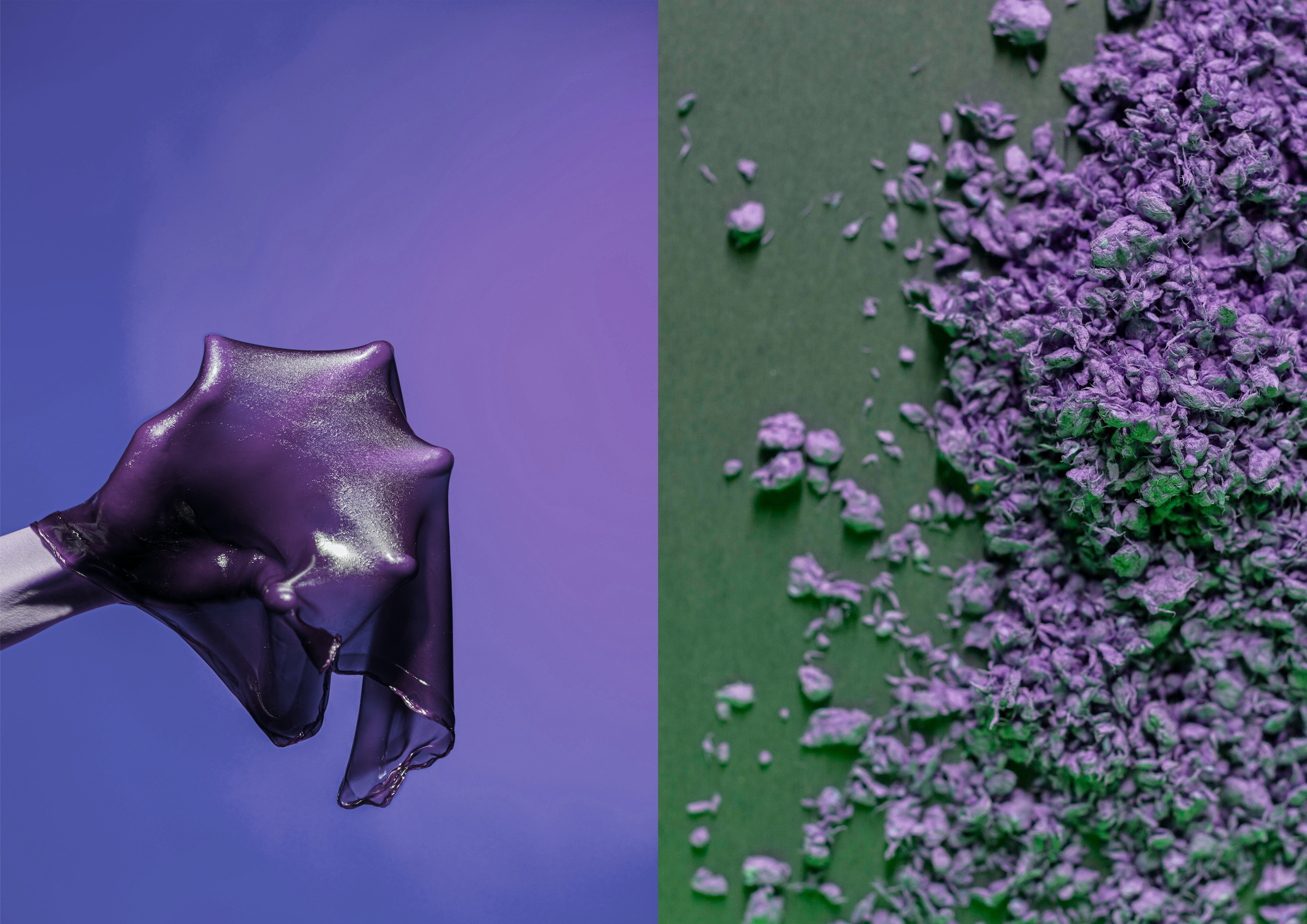 On the left: Hand holding a violet bioslime. On the right violet cellulose crumbs spread on a green paper.