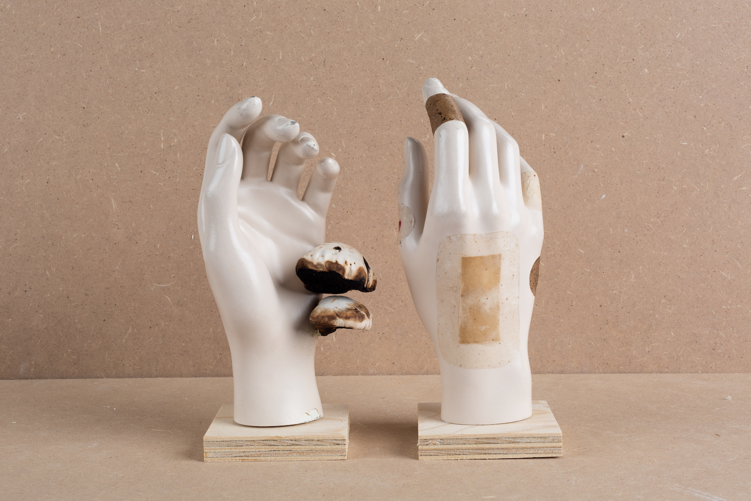 Fake white hands with biomaterial bangades